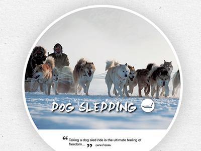 Big Arctic Five handout print