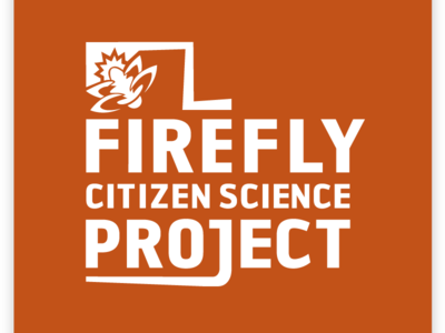 Firefly Citizen Science Project