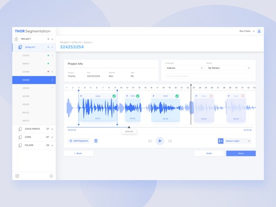 Voice Labeling Tool