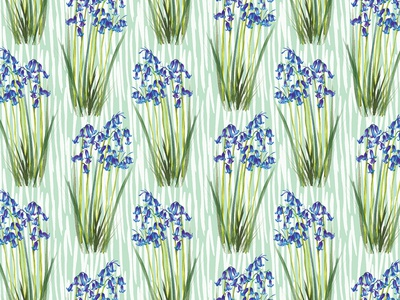 Bluebells Pattern