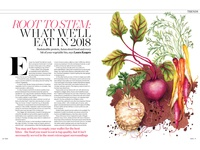 Watercolour Food Illustration Editorial Root Vegetables