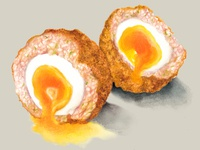 Watercolour Food Illustration Scotch Egg