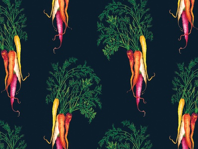 Watercolour Food Illustration Heritage Carrots Pattern