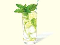 Watercolour cocktail Illustration - Mojito Summer
