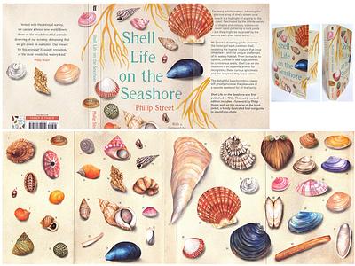 Shell Life On The Seashore Book Cover Illustrations beachlife book cover design publishing book cover beach coast seaside shells illustration nature watercolour illustration