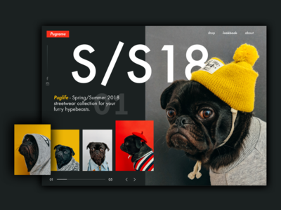 Pugreme - streetwear for dogs 🐶