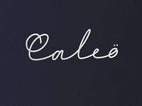 Option for logo