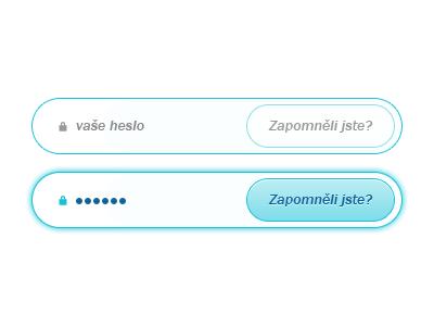 Sign In — Password Part form signin login password blue glow webdevel