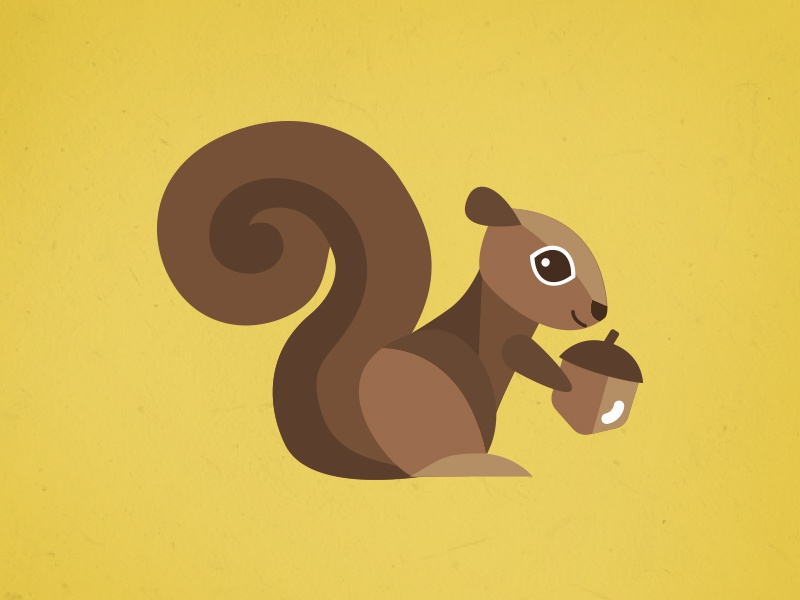 Squirrel Illustration woodland creatures animal fall autumn acorn vector illustration nature illustration squirrel
