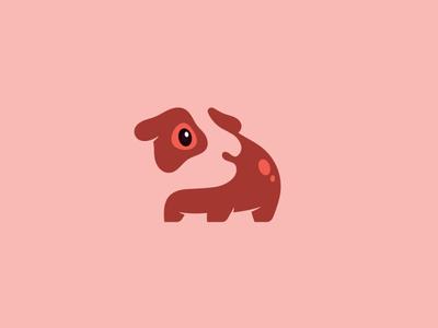 Guinea Pig Dreams