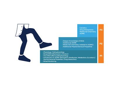 Practice-Ready Curriculum Model Illustration levels steps pharmacist model illustration