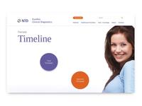 Interactive Prenatal Timeline