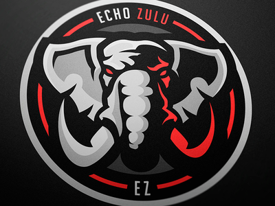 Echo Zulu sport logo sports logo mascot logo magic logotype logo esports branding