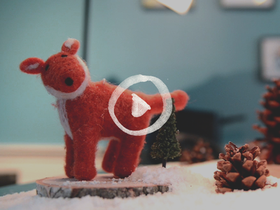 Nova Holiday Video