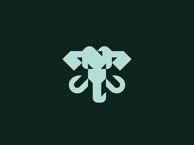 triangle-ellie-4.mp4