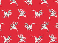 Raptor Pattern