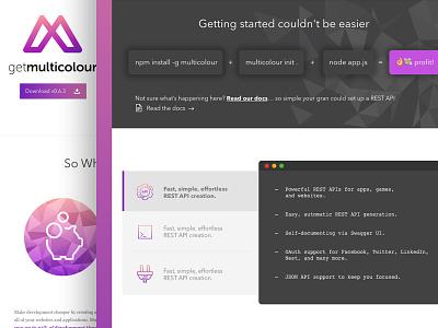 Multicolour Home Page logo purple grey steps browser ui design home web design api development