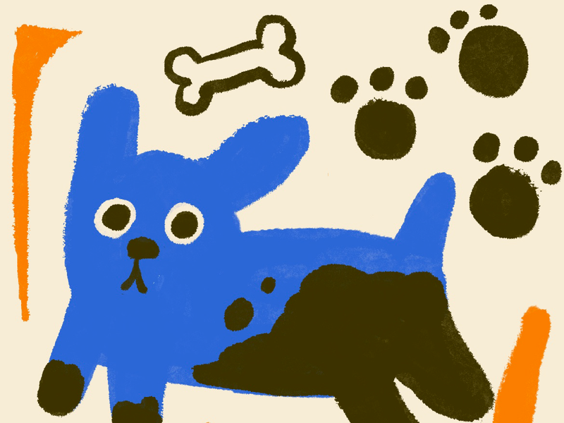perro mud bone dog