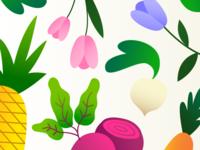 Spring Illos