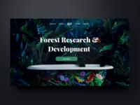 Deep forest website