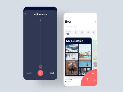Voice Notes