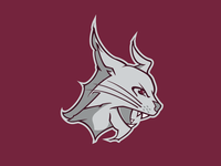 Lynx Final