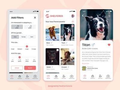 Pet Adoption App Concept ux design uiux ui design shelter pets pet adoption mobile ui app mobile dogs charity cats cards animals adobe xd