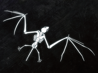 Bat Skeleton Illustration