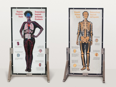 Magnetic Body Puzzle Board science museum exhibit skeleton circulatory education anatomy