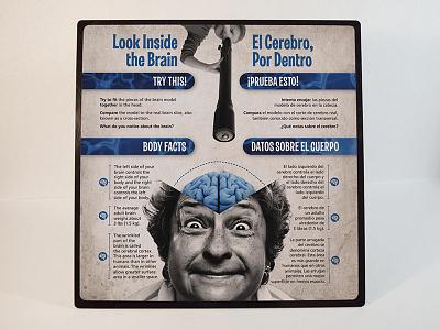 """Look Inside the Brain"" Sign brain science museum exhibit organs biology education anatomy"