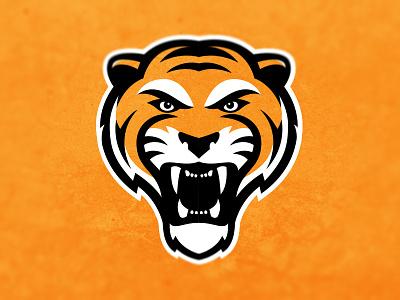 Tiger Logo Experiment sports logo sports logo tiger tigers