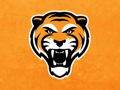 Tiger test dribbble