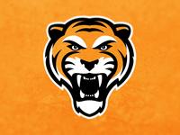 Tiger Logo Experiment