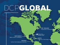 DCP Global Wall Map