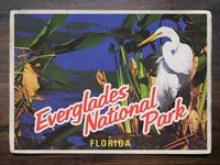Vintage Postcard: Everglades National Park