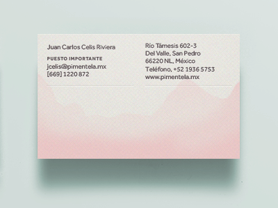 Pimentela Bizcard BACK print business card foil pink soft fabriano dipped