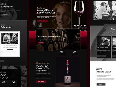 Wine Elementor Template mexico web branding elementor elementor-pro guadalajara interface uxui webdesign gold red wine template