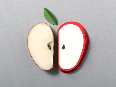 Art School vs. The Real World blog apple illustration concept still life design photography