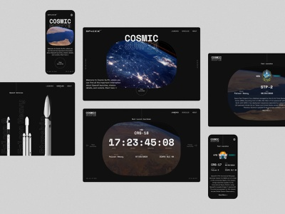 SpaceX Cosmic Surfin - 02 visual design design typography graphic design user interface design ui design ui  ux ui concept design website concept web design website design website