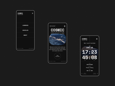 SpaceX Cosmic Surfin - 03 visual design graphic design typography universe space spacex user interface design user interface ui design uiux ui website concept web design website design website