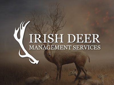 Irish Deer Management Services Logo irish deer wordmark logotype identity branding logo