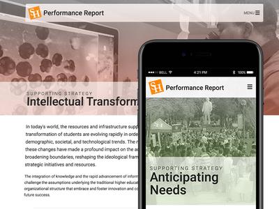 Performance Report